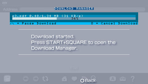 downloadManager